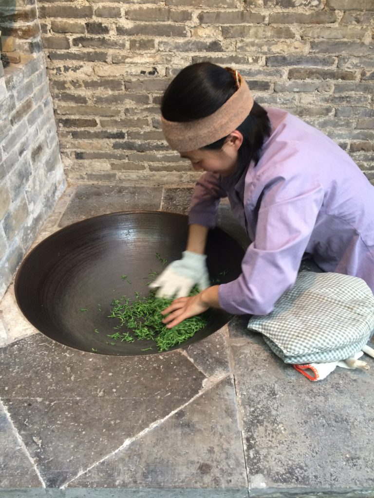 Bi Luo Chun green tea: Rolling the leaves