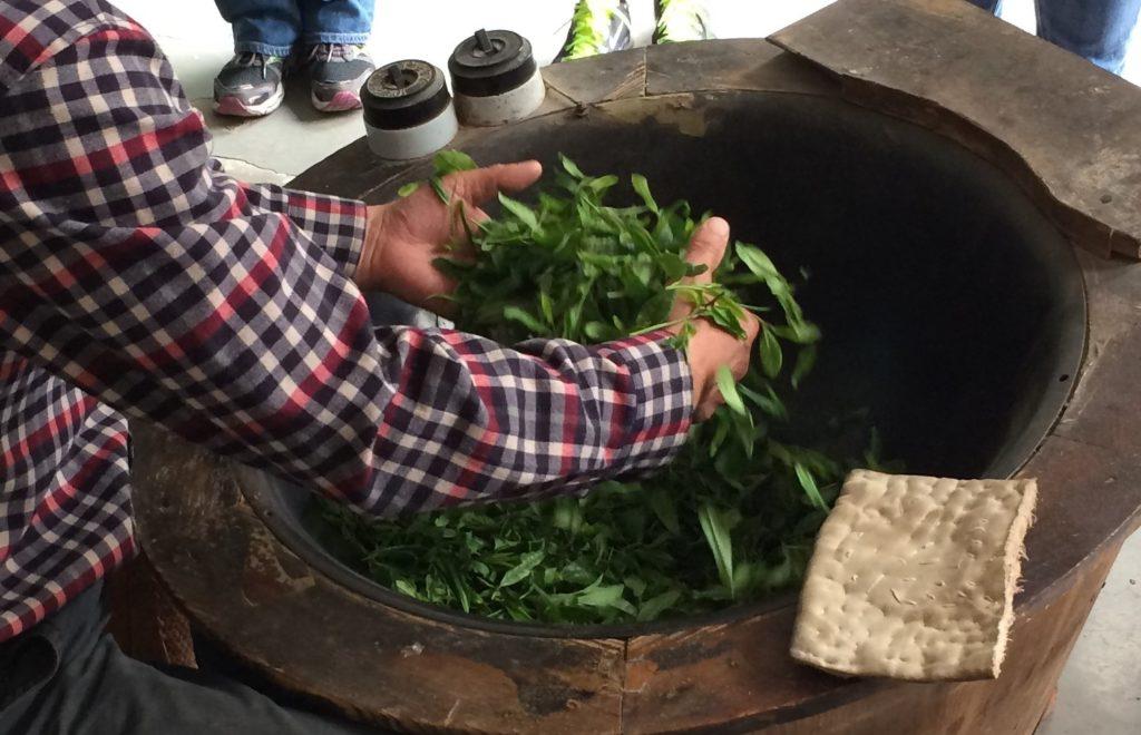 China: Long Jing Green Tea Garden