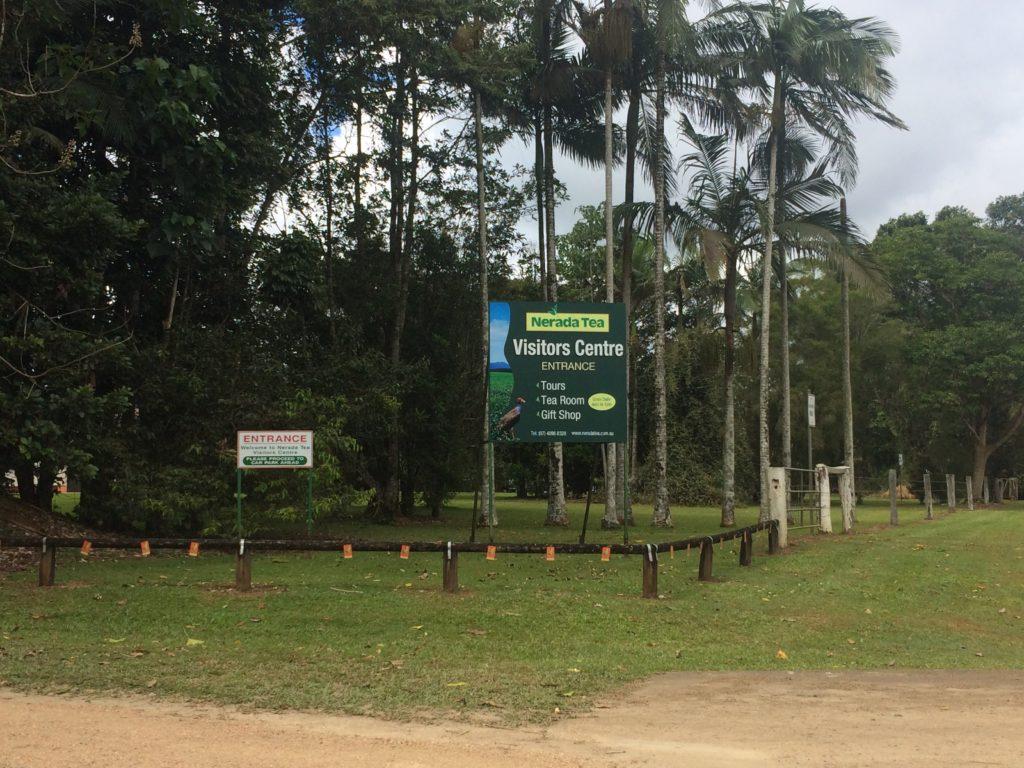 Entry to the Nerada Tea Plantation