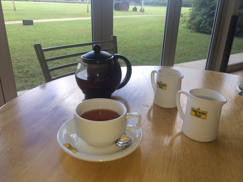 Cup of tea at Nerada Tea visitor centre